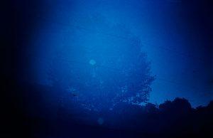 Lola Hakimian – La survivance des ombres